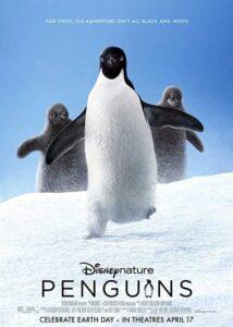 دانلود مستند Penguins 2019